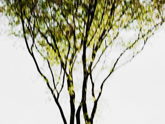 Copyright 2009 Jens Haas - www.jenshaas.com